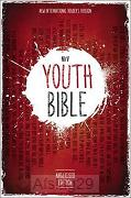 Youth Bible, Anglicised, HB